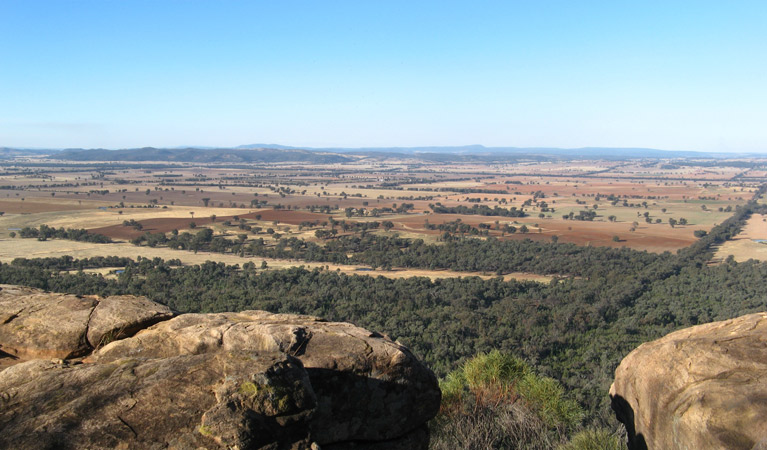 Basin Gully to Eualdrie lookout track