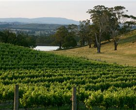 Granite Hills Winery - Accommodation Sunshine Coast