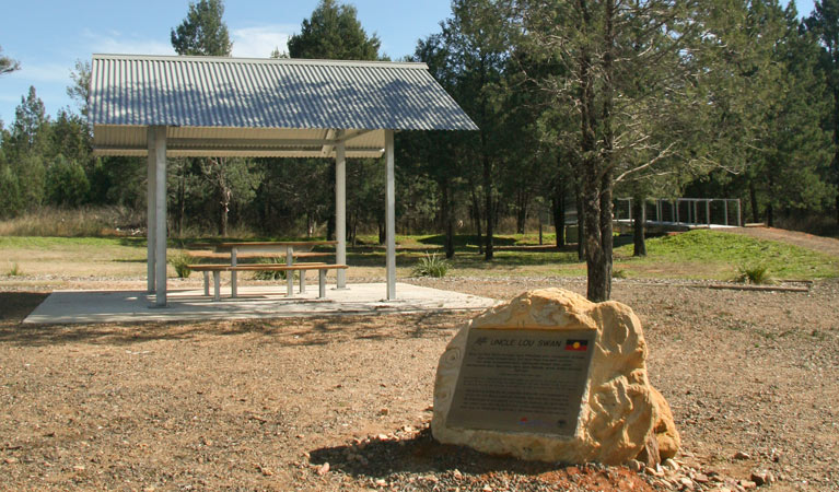 Terry Hie Hie picnic area - Accommodation Sunshine Coast