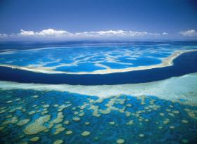 Hardy Reef - Accommodation Sunshine Coast
