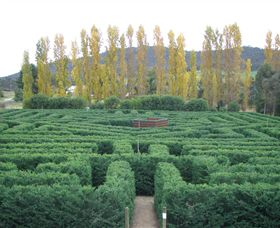 Brookfield Maze - Accommodation Sunshine Coast