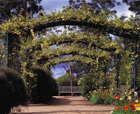 Blue Mountains Botanic Garden - Accommodation Sunshine Coast