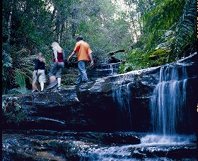 South Lawson Waterfall Circuit - Accommodation Sunshine Coast