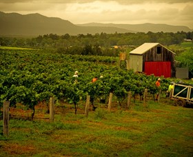 Around Hermitage Wine and Food Trail Hunter Valley - Accommodation Sunshine Coast