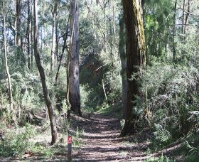 Box Vale Mine Walking Track and Lookout - Accommodation Sunshine Coast
