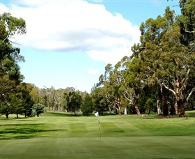 Cooma Golf Club - Accommodation Sunshine Coast