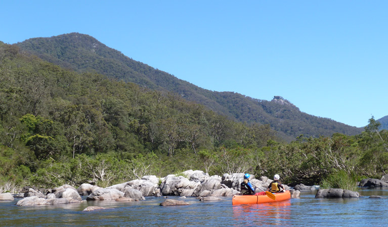 Nymboida National Park - Accommodation Sunshine Coast