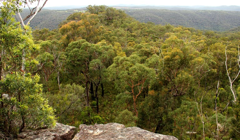Mount Olive lookout - Accommodation Sunshine Coast