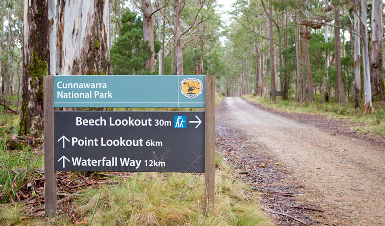 Beech lookout - Accommodation Sunshine Coast