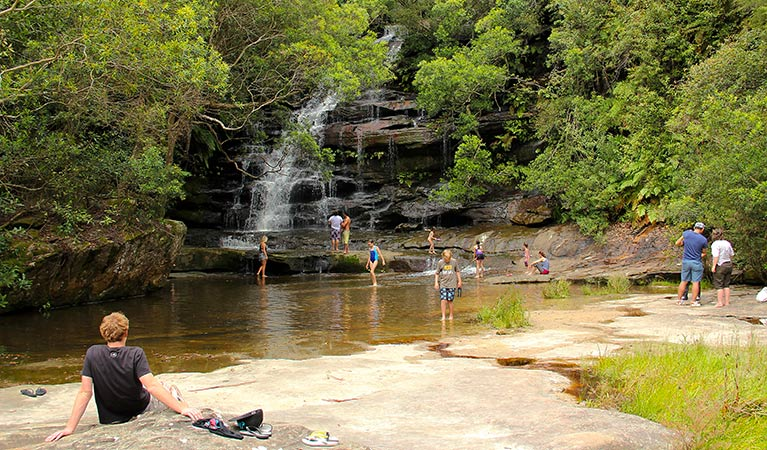 Somersby Falls picnic area - Accommodation Sunshine Coast