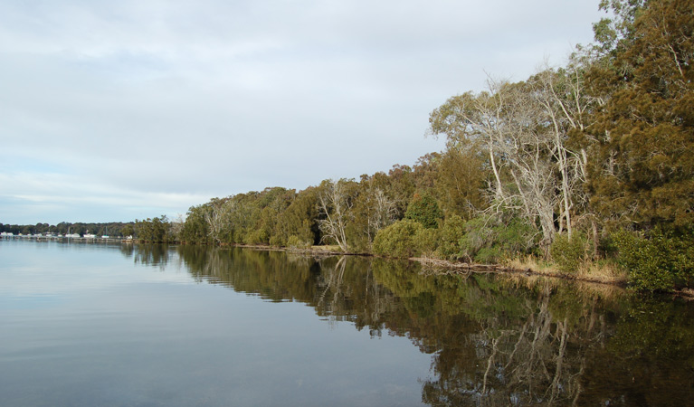 Lake Macquarie State Conservation Area - Accommodation Sunshine Coast
