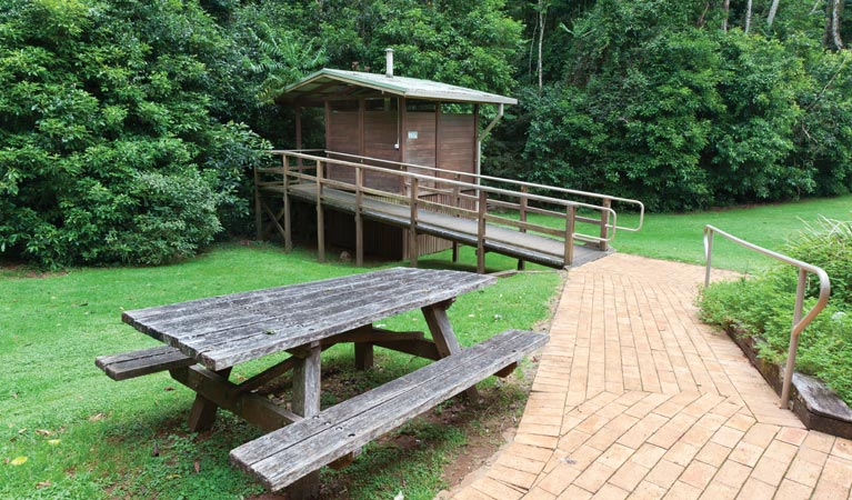 The Glade picnic area - Accommodation Sunshine Coast