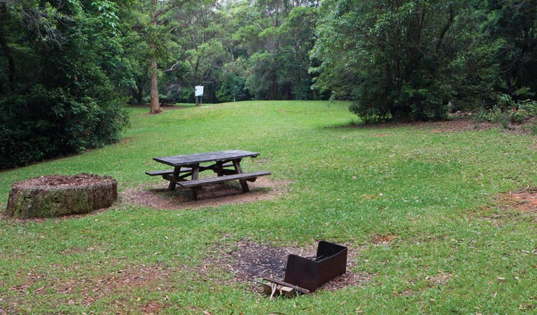 Never Never picnic area - Accommodation Sunshine Coast