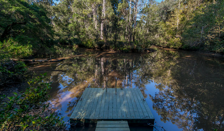 Brimbin Nature Reserve - Accommodation Sunshine Coast