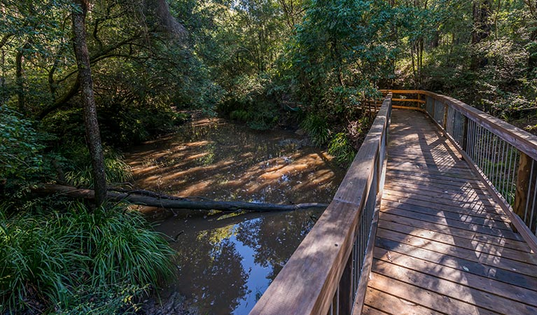Ms Kellys walking track - Accommodation Sunshine Coast
