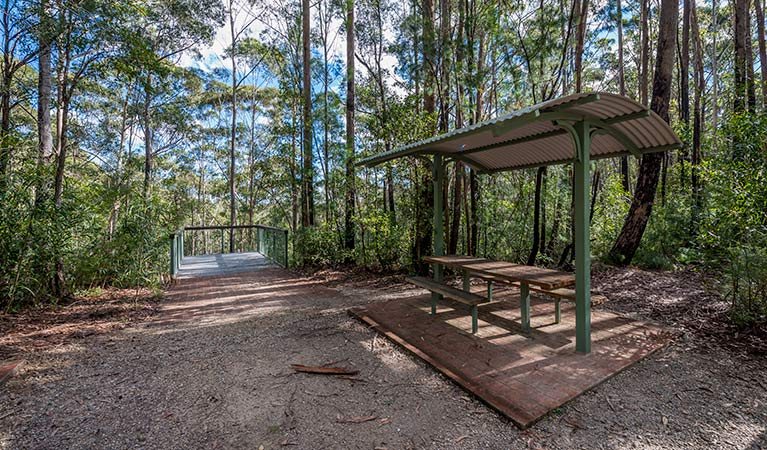 Big Nellie lookout and picnic area - Accommodation Sunshine Coast