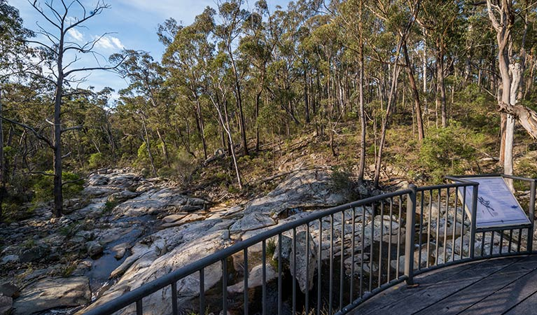 Myanba Gorge walking track - Accommodation Sunshine Coast