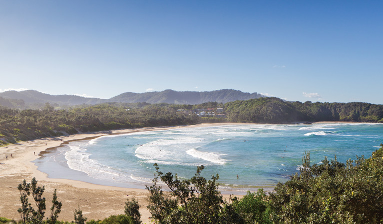 Coffs Coast Regional Park - Accommodation Sunshine Coast