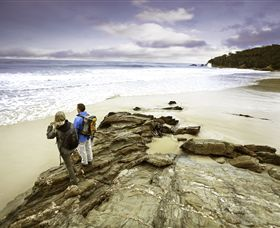 Wilderness Coast Walk - Accommodation Sunshine Coast