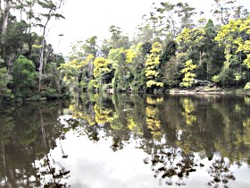 Arthur River - Accommodation Sunshine Coast