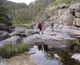 Nadgee Wilderness Walk - Accommodation Sunshine Coast