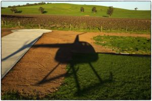 Barossa Helicopters Pty Ltd - Accommodation Sunshine Coast