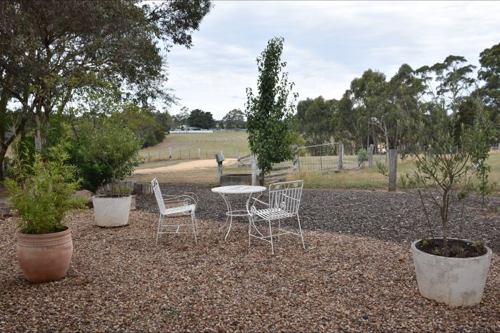 Cygnet Park Country Retreat - Accommodation Sunshine Coast