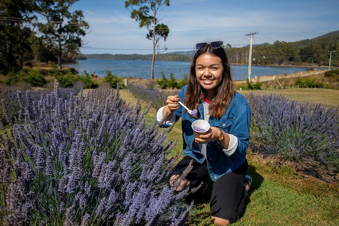 Port Arthur and Lavender Farm Active Day Tour