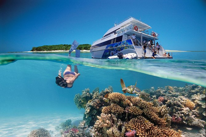 3-Day Southern Great Barrier Reef Tour Including Lady Musgrave Island - Accommodation Sunshine Coast