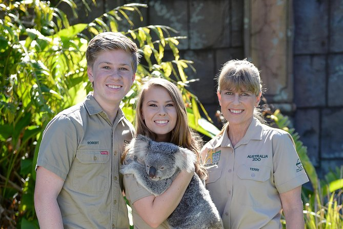 Koala Cuddle Adventure Croc 2 - Accommodation Sunshine Coast