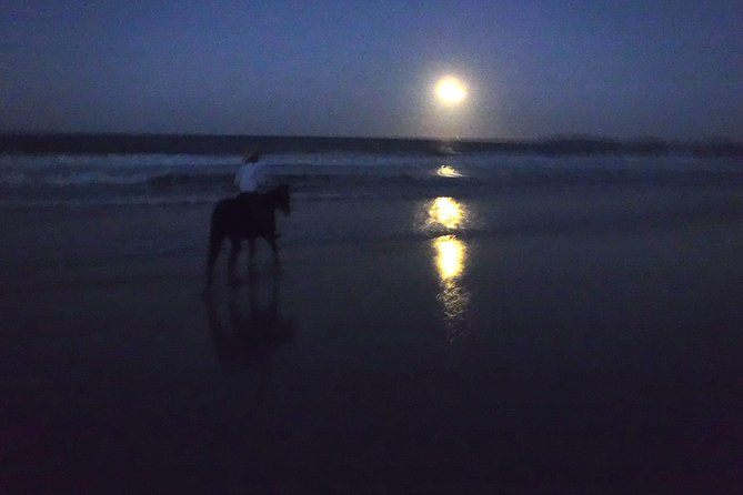 Full Moon Horse Ride at Rainbow Beach - Accommodation Sunshine Coast