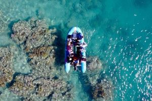 Glass-bottom boat tour with Whitehaven Beach - Accommodation Sunshine Coast