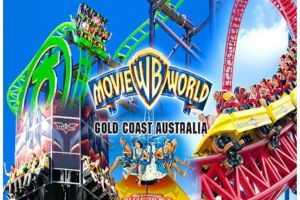 Gold Coast Theme Parks - Accommodation Sunshine Coast