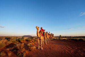 Uluru Small-Group Tour by Camel at Sunrise or Sunset - Accommodation Sunshine Coast