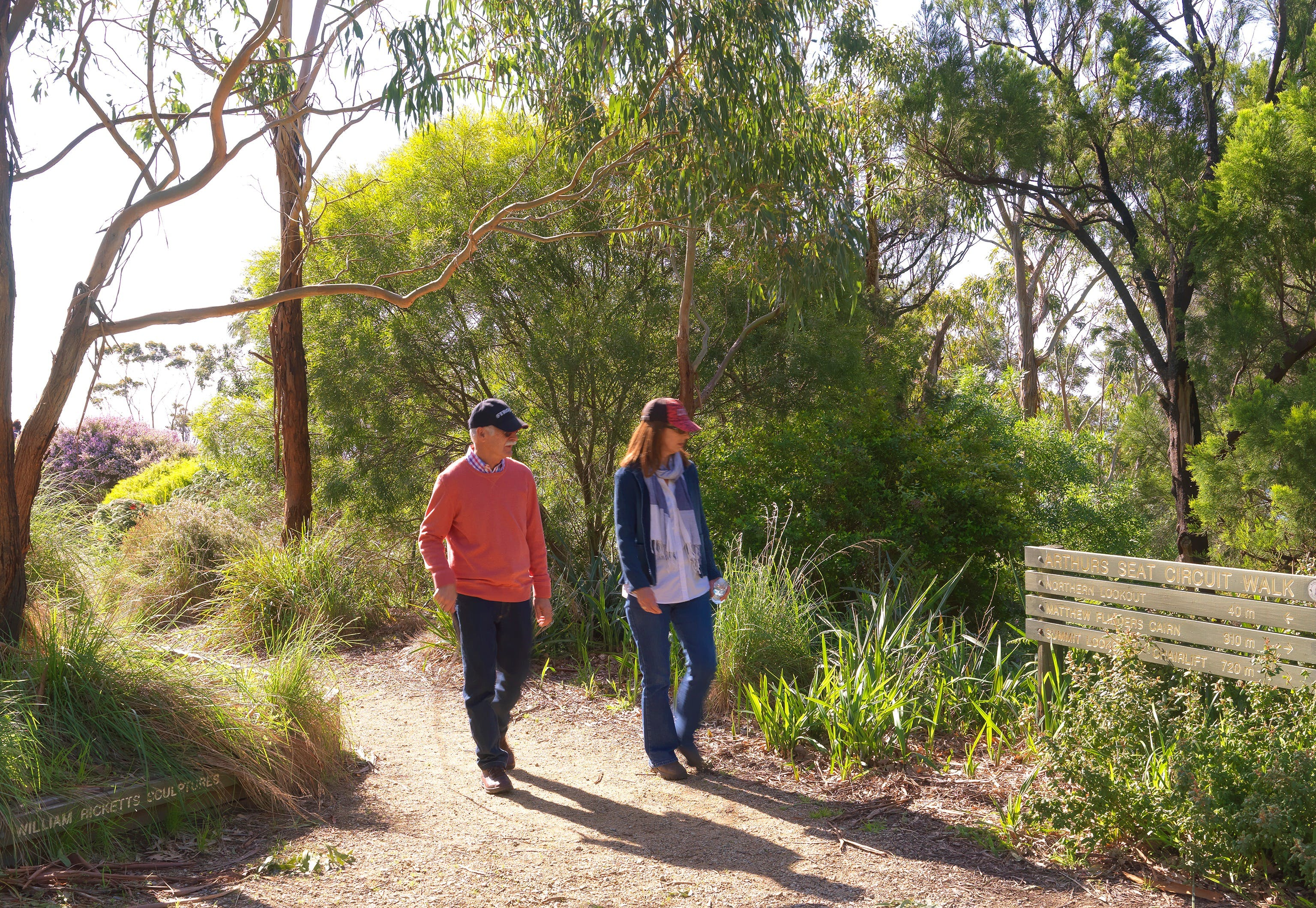 Arthurs Seat Circuit Walk - Accommodation Sunshine Coast