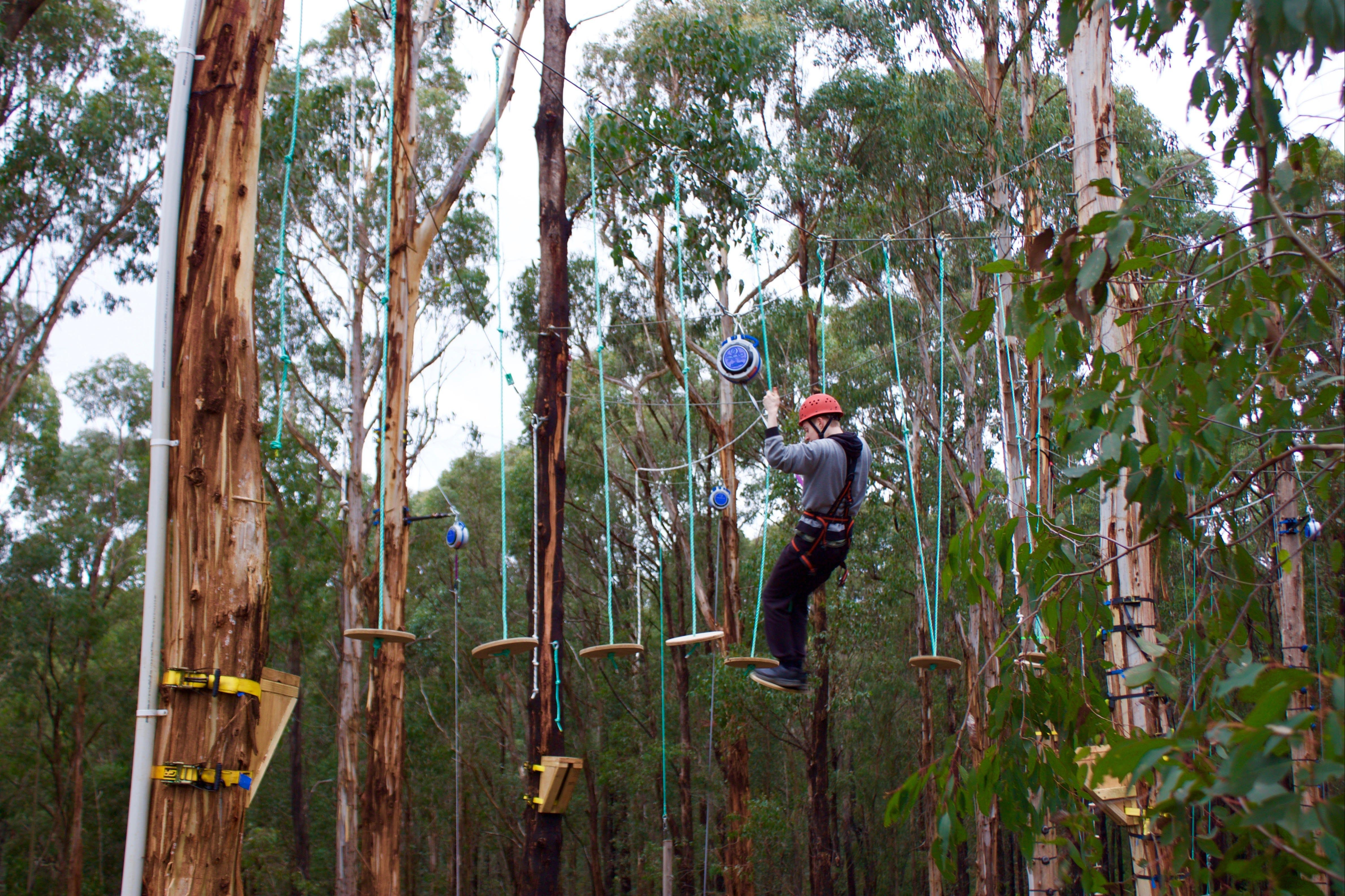 Kinglake Forest Adventures - Accommodation Sunshine Coast