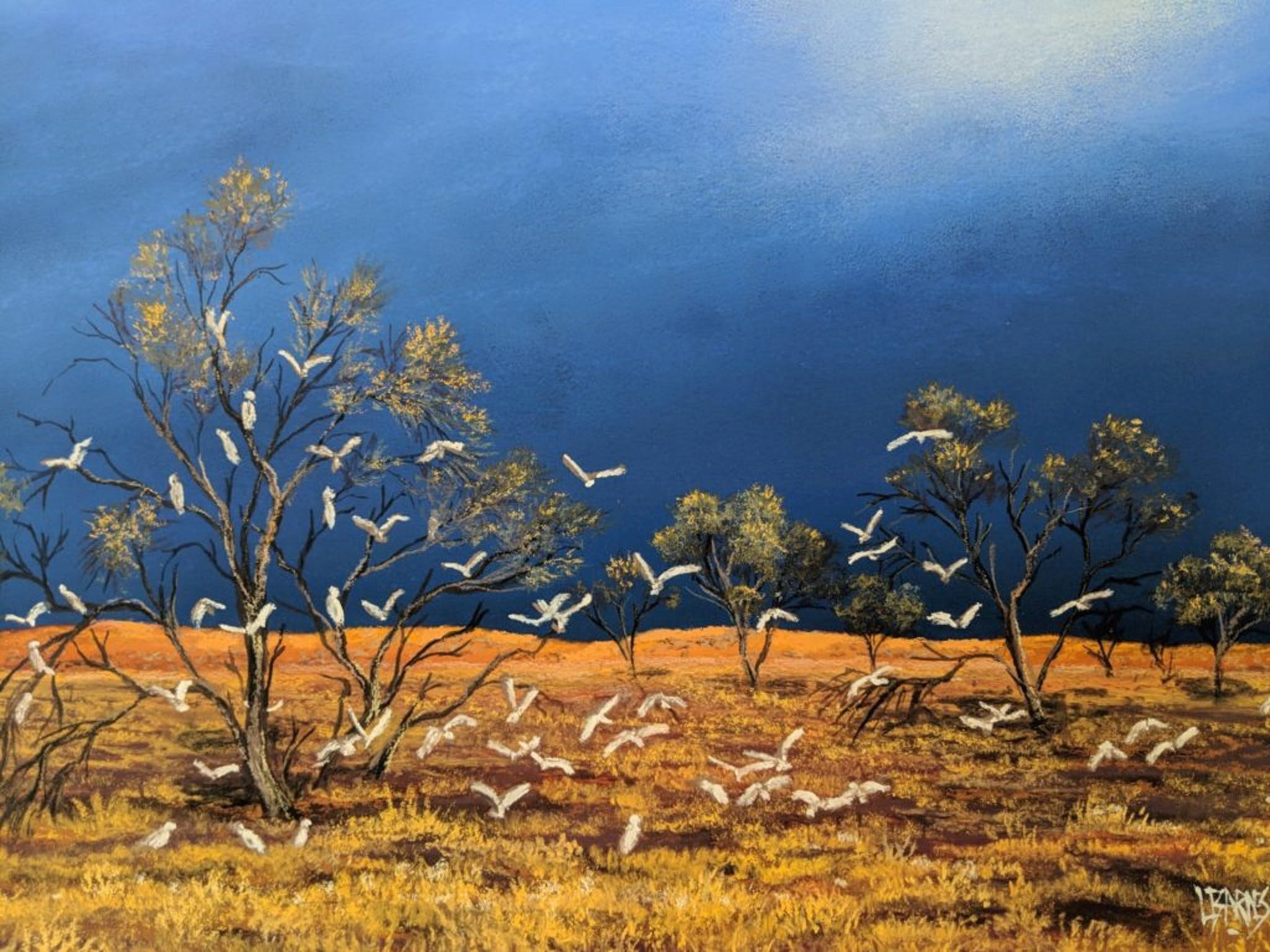 Lyn Barnes Gallery - Accommodation Sunshine Coast