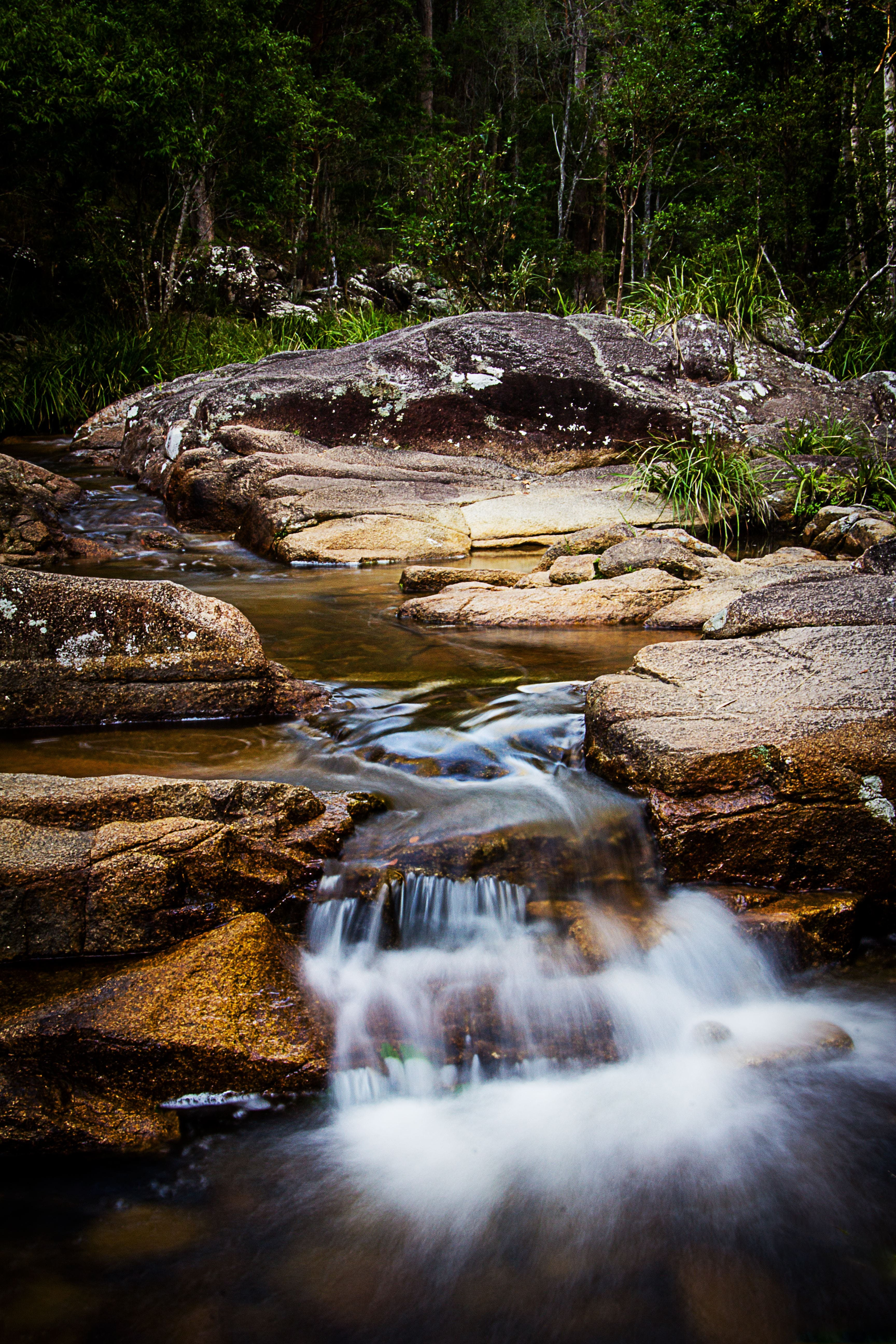 Mothar Mountain Rockpools - Accommodation Sunshine Coast