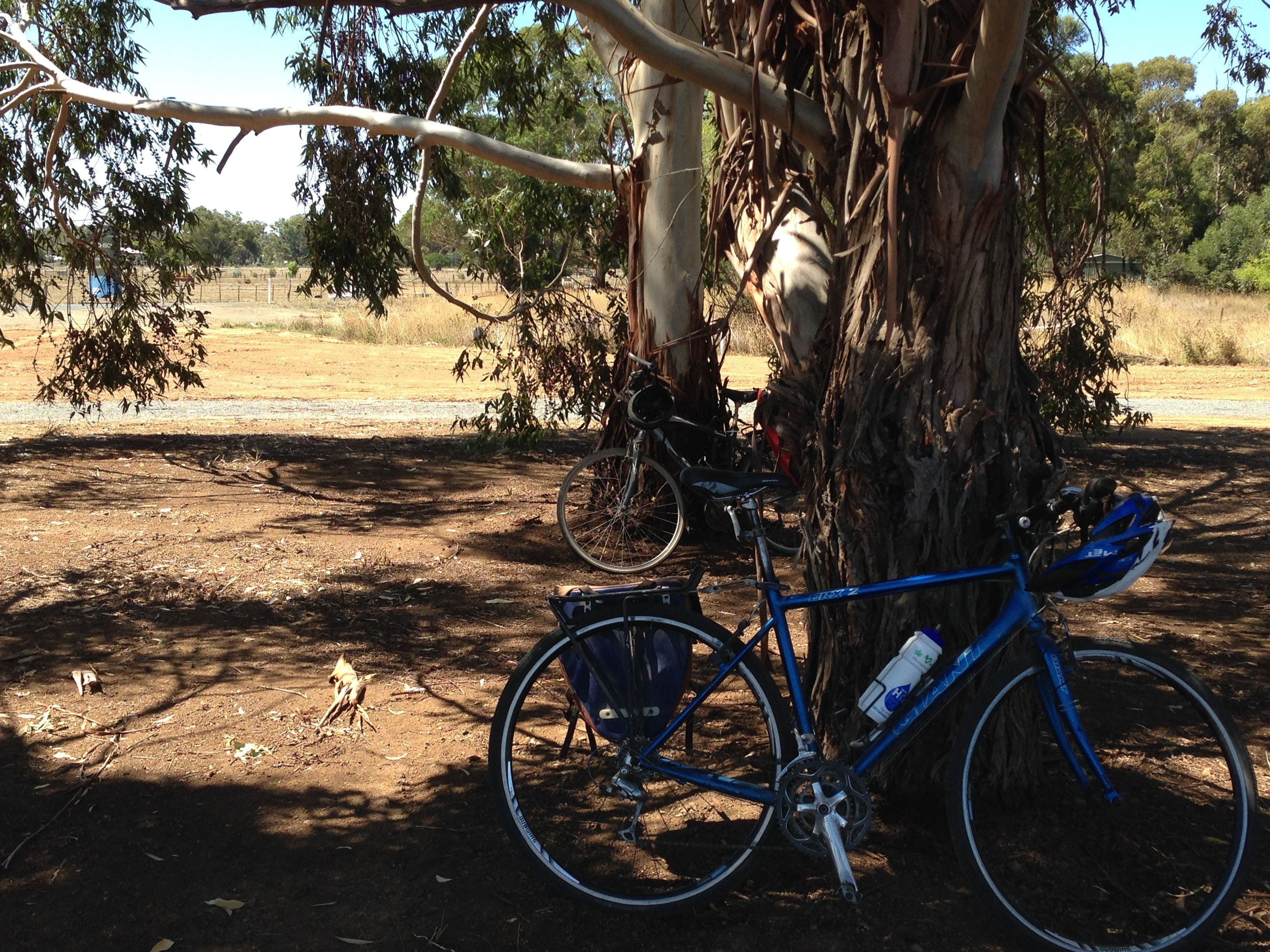 Murchison Rail Trail - Accommodation Sunshine Coast