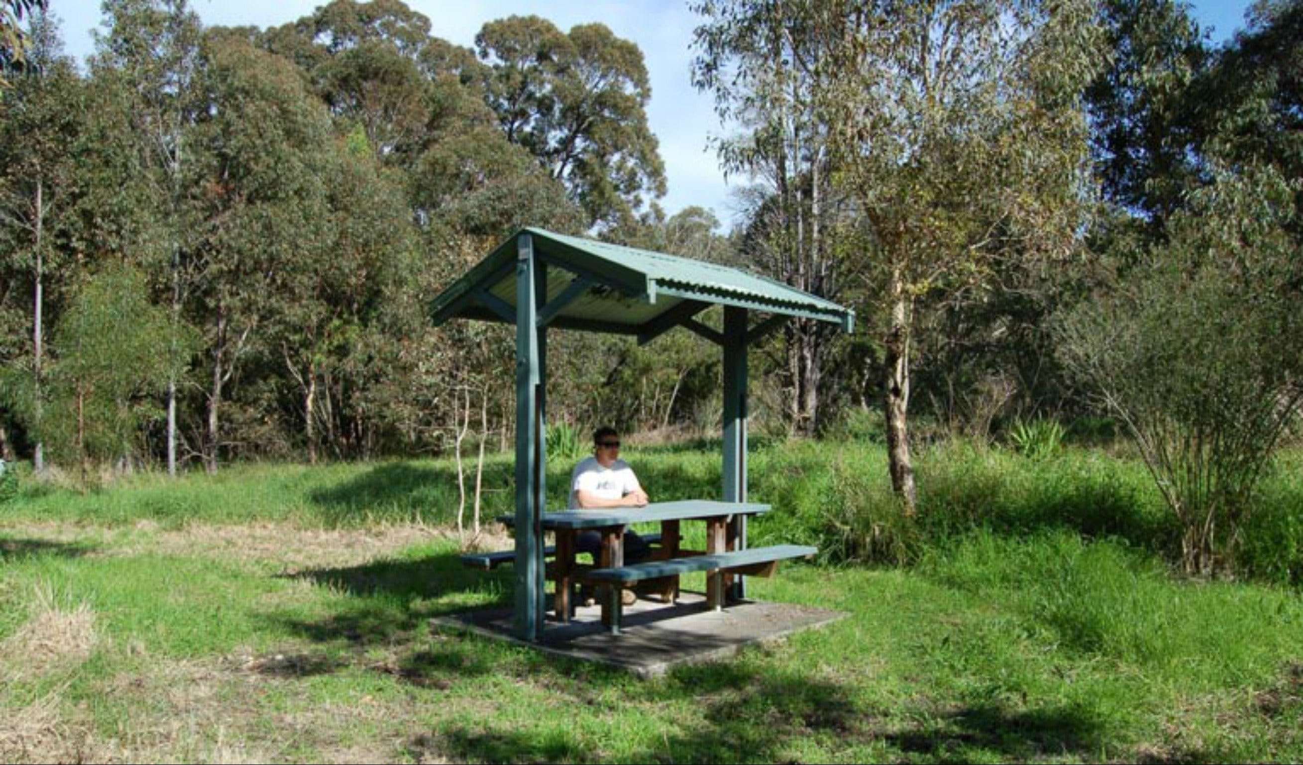 Alexanders picnic area - Accommodation Sunshine Coast