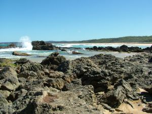 Coastal Walks - Bermagui - Accommodation Sunshine Coast