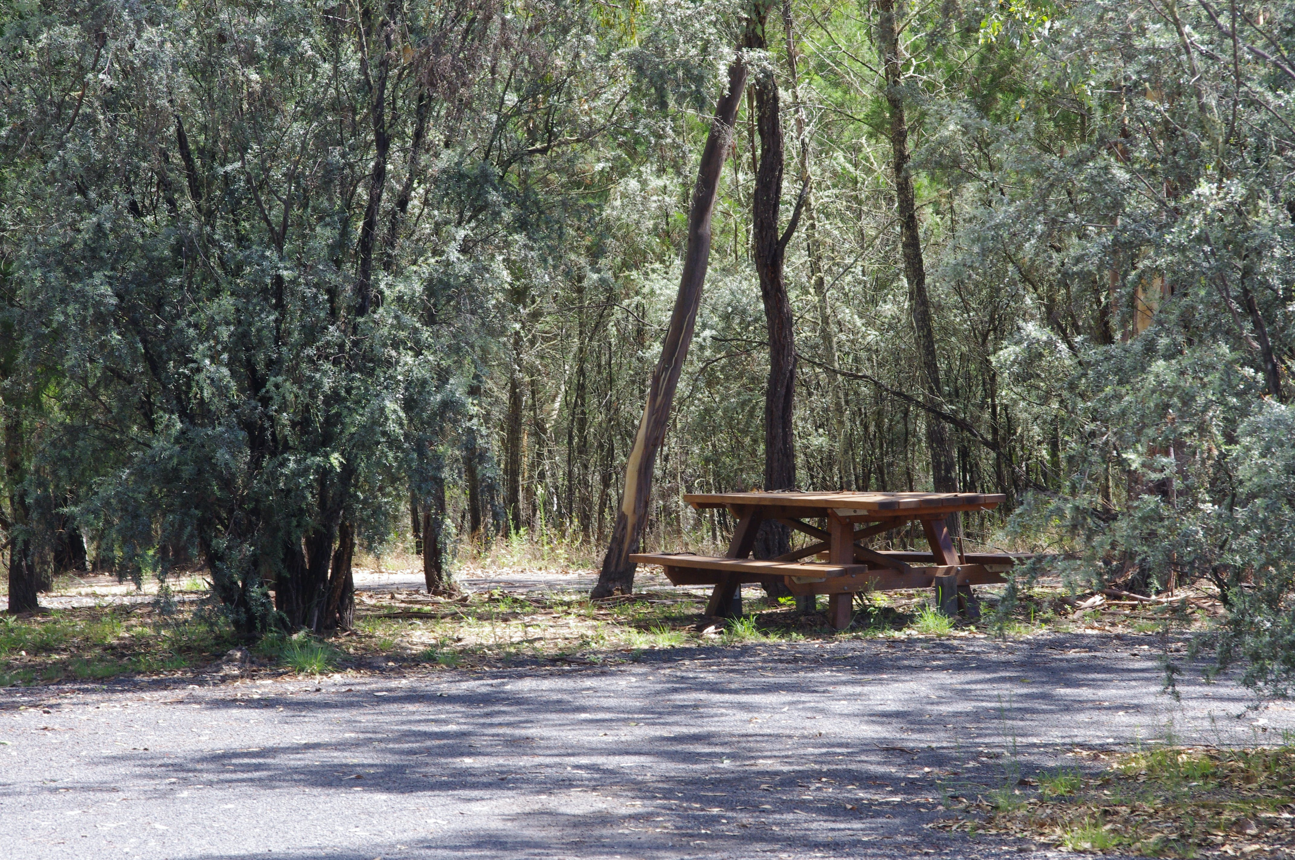 Goonoowigall State Conservation Area - Accommodation Sunshine Coast