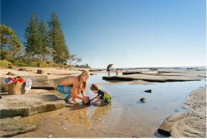 Shelly Beach - Accommodation Sunshine Coast