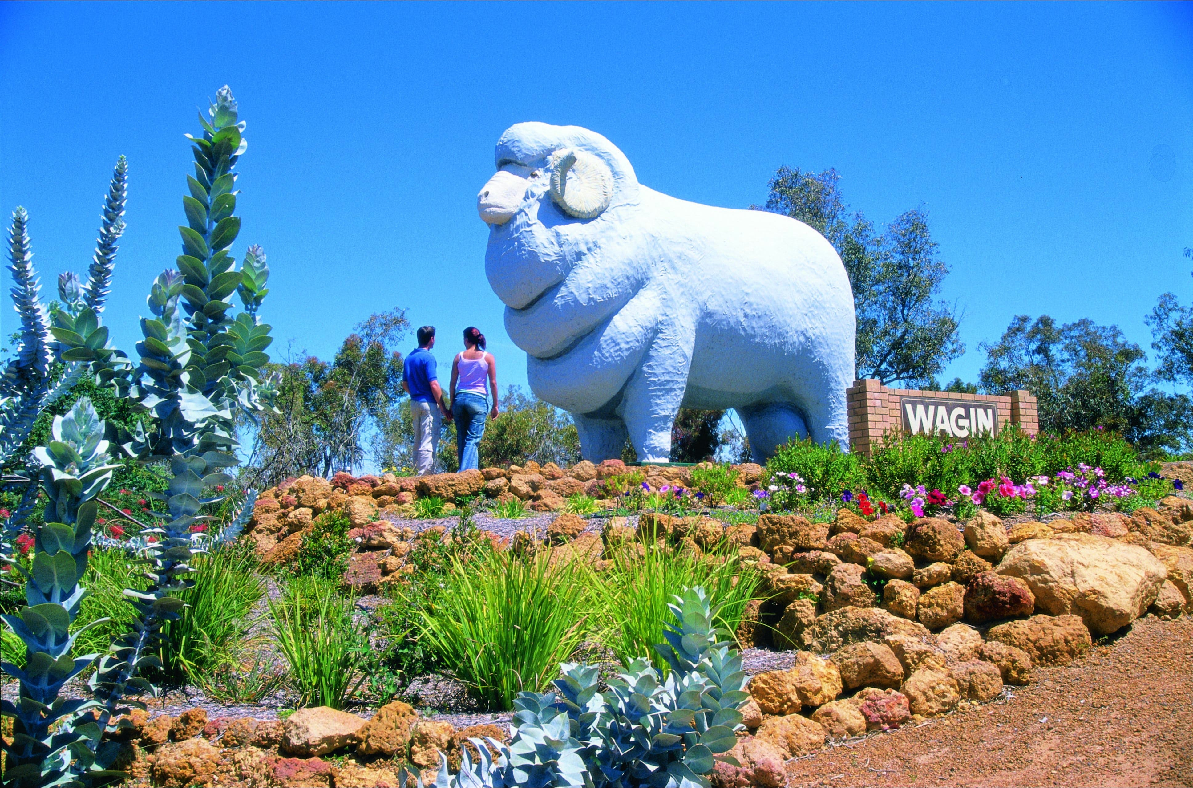 Wagin - Accommodation Sunshine Coast