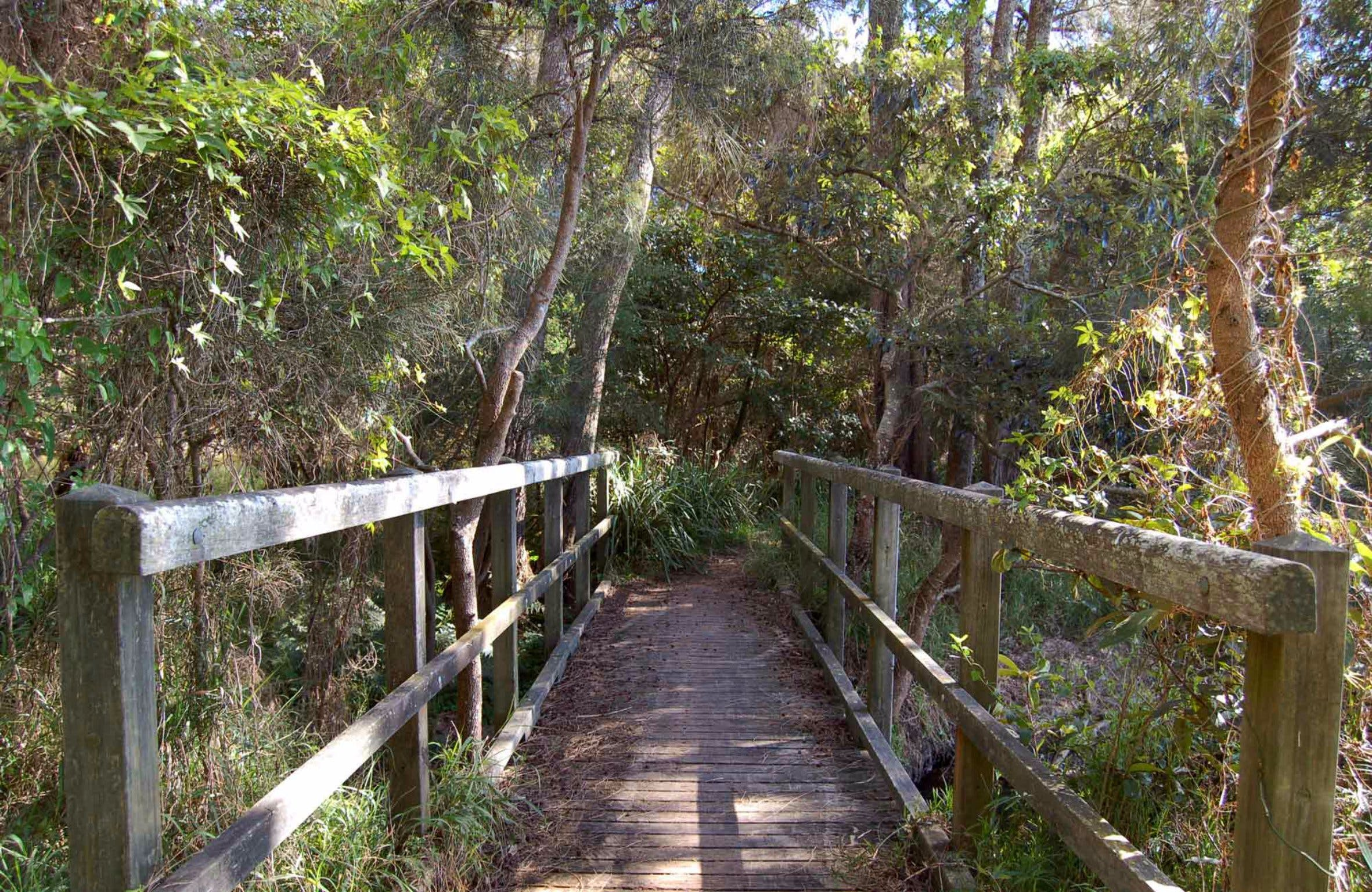 Awaba Bay Foreshore Walk - Accommodation Sunshine Coast