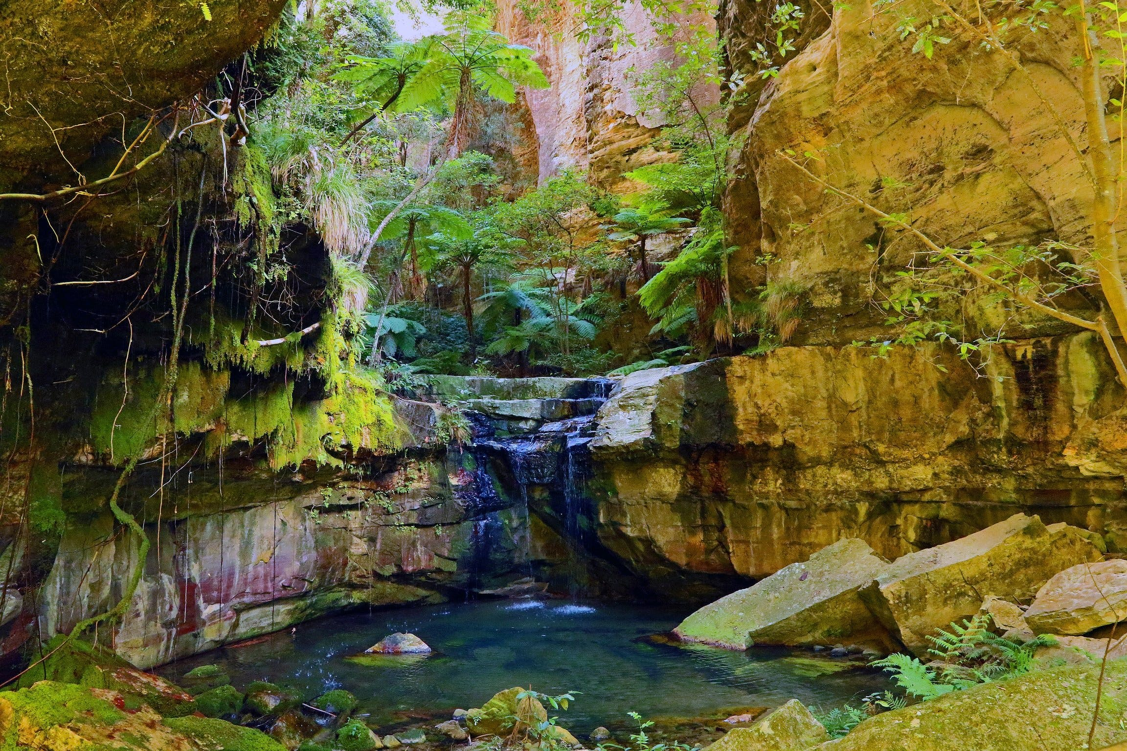 Glimpse of the Outback 5 Day Tour - Roma and Surrounds - Accommodation Sunshine Coast