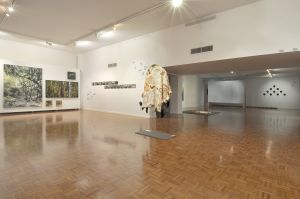 Noosa Regional Gallery - Accommodation Sunshine Coast