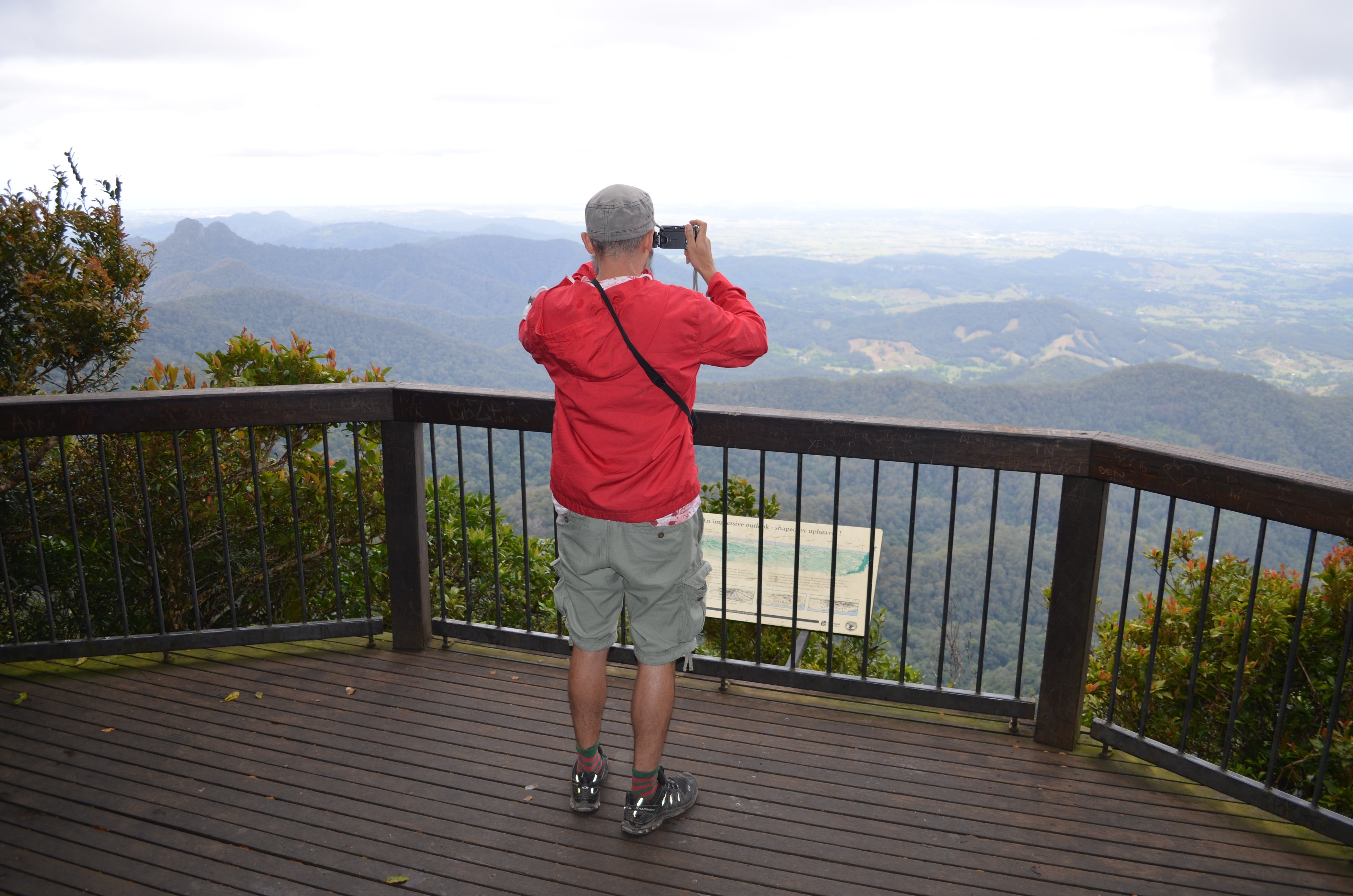 Best of All lookout track Springbrook National Park - Accommodation Sunshine Coast