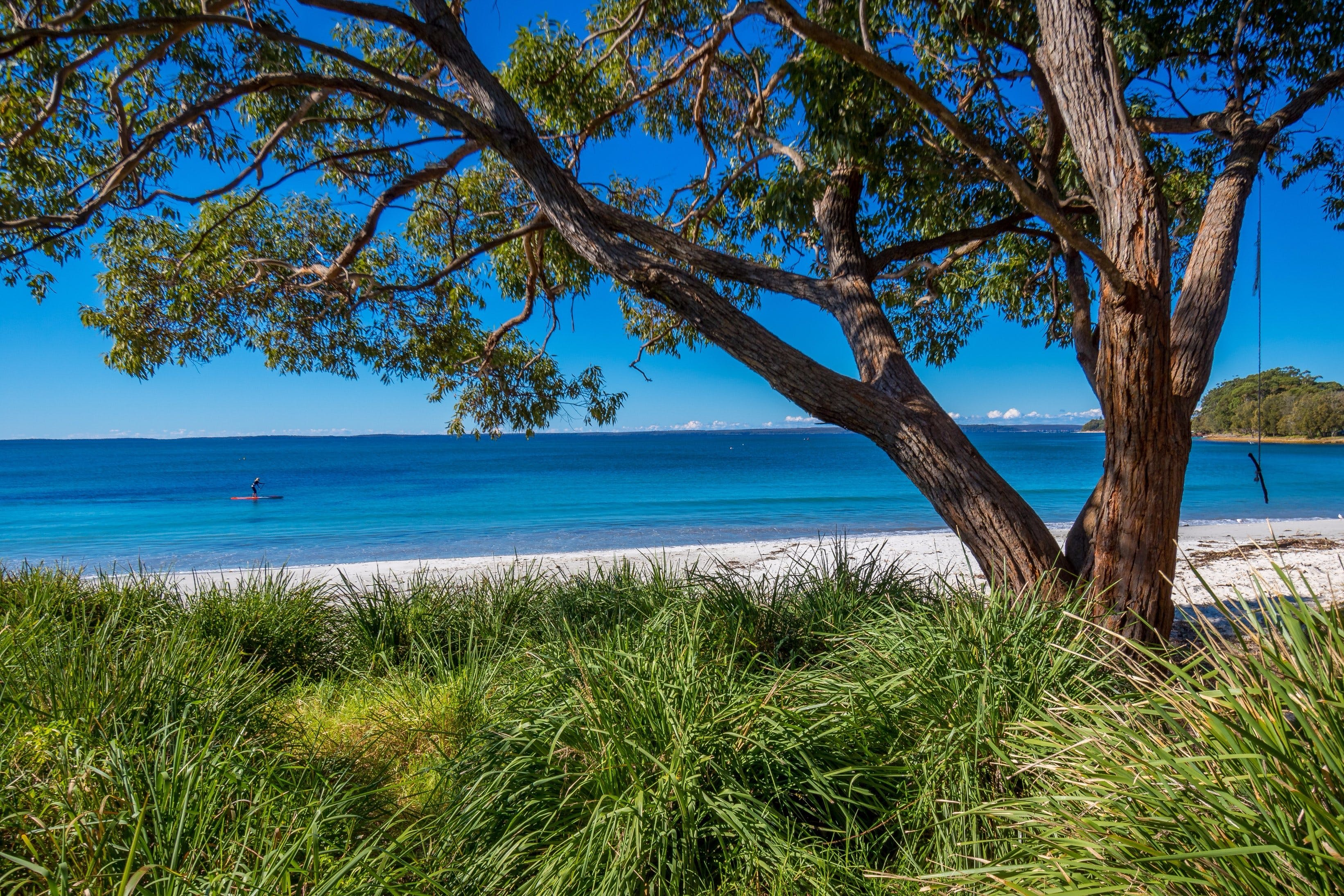 Collingwood Beach - Accommodation Sunshine Coast