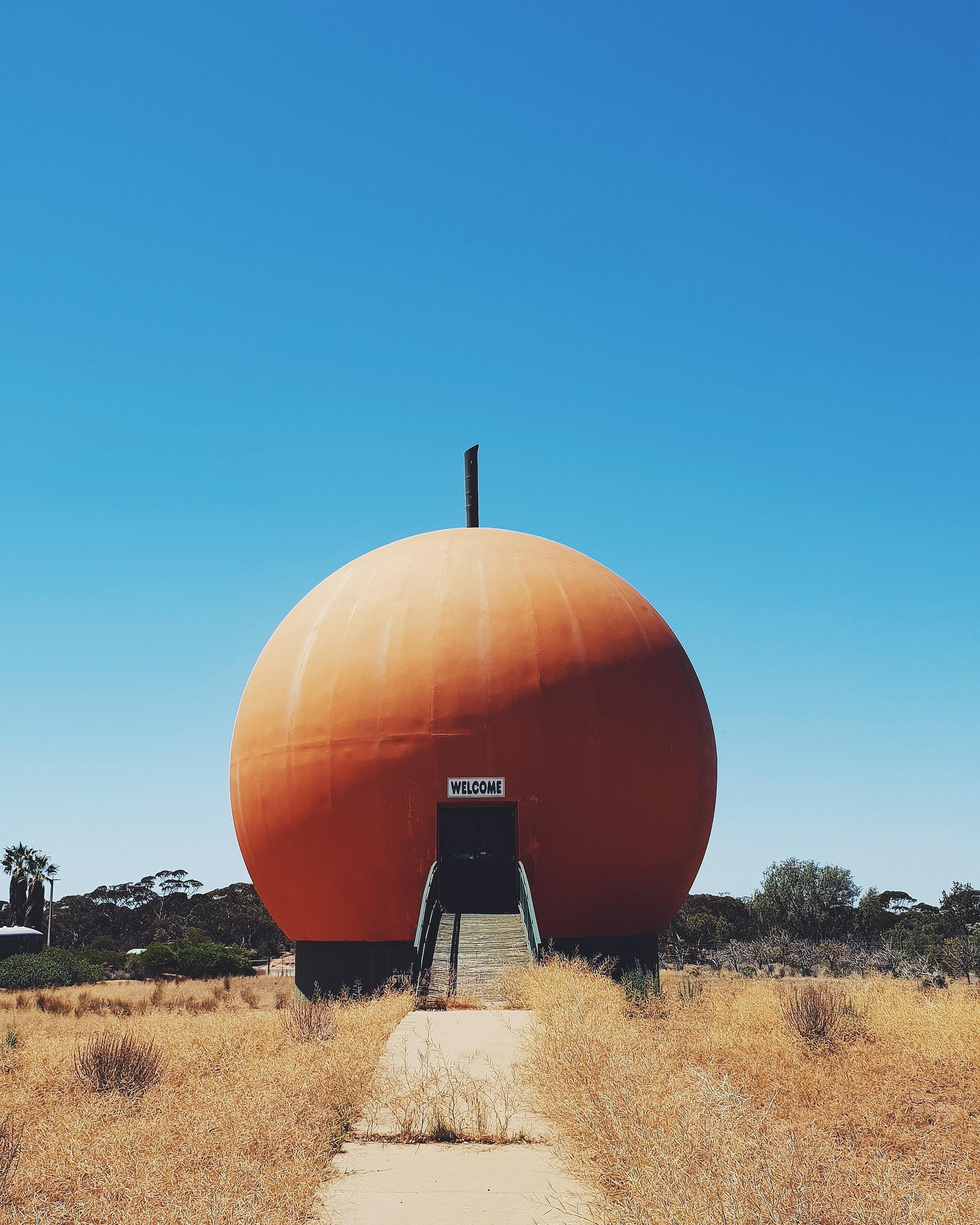 The Big Orange - Accommodation Sunshine Coast